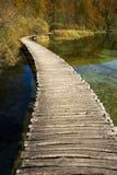 les beaux lacs de jour d'automne s'approchent du plitvice ensoleillé Images libres de droits
