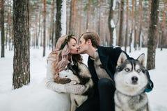 Les beaux nouveaux mariés embrassent sur le fond du chien de traîneau marié de mariée wedding à l'extérieur l'hiver dessin-modèle Images libres de droits