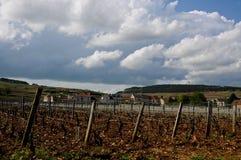 Les beaux vignobles à Beaune Cote de Beaune où le vin est Images libres de droits