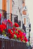 Les belles barrières de Londres avec les fleurs et le décor ont tiré à d peu profond photographie stock libre de droits