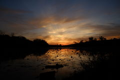 Les belles couleurs du crépuscule comme soleil se fane derrière les arbres Photos stock
