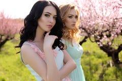 Les belles femmes dans des robes élégantes posant dans la fleur font du jardinage Photos stock