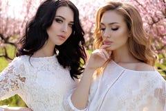 Les belles femmes dans des robes élégantes posant dans la fleur font du jardinage Photographie stock libre de droits