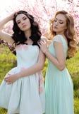 Les belles femmes dans des robes élégantes posant dans la fleur font du jardinage Photo stock