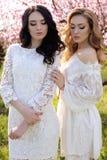 Les belles femmes dans des robes élégantes posant dans la fleur font du jardinage Image stock
