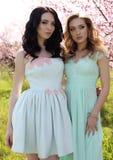 Les belles femmes dans des robes élégantes posant dans la fleur font du jardinage Image libre de droits