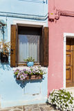 Les belles fenêtres avec accrocher fleurit en île de Burano (Venise, Italie) Image stock