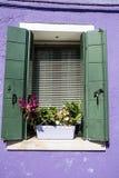 Les belles fenêtres avec le pot fleurit en île de Burano (Venise, Italie) Photos stock