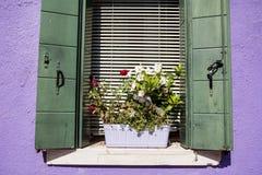 Les belles fenêtres avec le pot fleurit en île de Burano (Venise, Italie) Photo stock