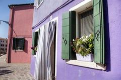 Les belles fenêtres avec le pot fleurit en île de Burano (Venise, Italie) Images stock