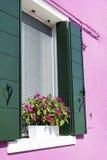 Les belles fenêtres avec le pot fleurit en île de Burano (Venise, Italie) Image stock