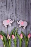 Les belles fleurs dentellent des tulipes et des éléphants de pain d'épice avec des coeurs sur un fond gris Vue supérieure, l'espa Images libres de droits