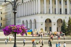 Les belles fleurs pourpres dans le pot de fleur sur le réverbère signalent le poteau dans la ville Image libre de droits
