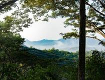 Les belles montagnes sont scrutées entre les lacunes dans les feuilles photos libres de droits