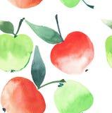 Les belles quatre pommes lumineuses modèlent le croquis de main d'aquarelle Photographie stock