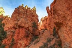 Les belles roches rouges sur le royaume des fées traînent, Bryce Canyon, Utah Photographie stock libre de droits