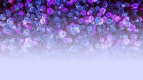 Les belles roses bleues naturelles fleurissent le fond pour la bannière d'occasions spéciales Images stock