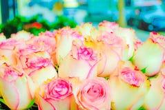 Les belles roses rouge-rose fleurit à un magasin de fleur parisien Image libre de droits