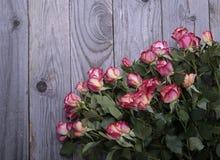 Les belles roses se trouvent sur la table en bois rugueuse Photos libres de droits