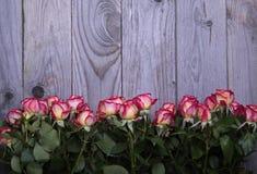 Les belles roses se trouvent sur la vue supérieure en bois de table Image libre de droits