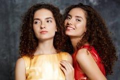 Les belles soeurs jumelle poser le sourire au-dessus du fond gris Image stock