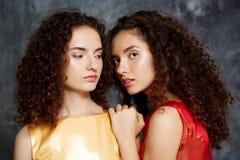 Les belles soeurs jumelle poser le sourire au-dessus du fond gris Photos libres de droits