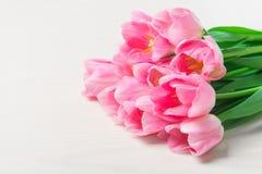 Les belles tulipes roses fleurit sur le fond en bois blanc Photographie stock libre de droits