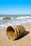 Les bernaches d'oie ont attaché dans le seau en plastique sur la plage avec le ciel bleu Photo stock