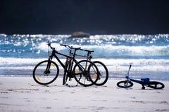 Les bicyclettes pour la famille entière attendent des cyclistes sur la PA Photo stock