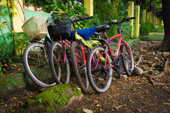 Les bicyclettes se sont garées sous l'arbre Depok rentré par photo Indonésie photographie stock libre de droits