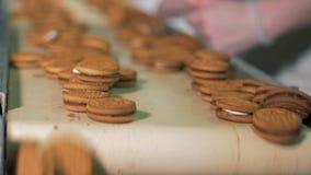 Les biscuits se déplacent sur une ligne à une usine clips vidéos