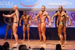 Les bodybuilders masculins fléchissent leurs muscles et montrent leur meilleur physiqu Photo libre de droits