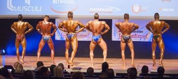 Les bodybuilders masculins fléchissent leurs muscles et montrent leur physique photographie stock libre de droits