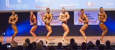 Les bodybuilders masculins fléchissent leurs muscles et montrent leur physique image libre de droits