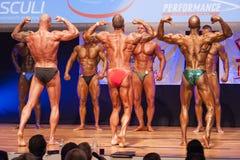 Les bodybuilders masculins fléchissent leurs muscles et montrent leur physique images libres de droits