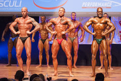 Les bodybuilders masculins fléchissent leurs muscles et montrent leur physique images stock