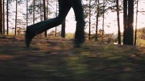 Les bois de marche de cuvette d'homme mince s'approchent du lac sur le coucher du soleil banque de vidéos