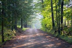 Les bois s'approchent du lac George Photos stock