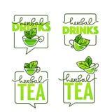 Les boissons de fines herbes dirigent logo de schéma avec le compo de lettrage de handrawn Photos stock