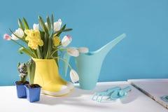 Les bottes en caoutchouc jaunes avec un bouquet des fleurs des jonquilles jaunes et des tulipes blanches et roses Accessoires de  Photo stock
