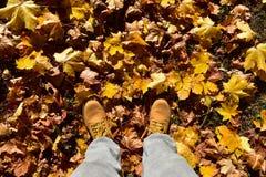 Les bottes ont assorti les couleurs d'automne image stock