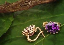 Les boucles d'oreille de Jewellry avec le gemsr sur le vert pousse des feuilles fond, copyspac Photos libres de droits