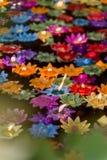 Les bougies de flottement de fleur dans l'eau pour font le mérite dans le bouddhiste Photographie stock