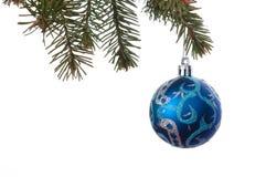 Les boules bleues de Noël sur le sapin vert s'embranchent Fond blanc Photo stock