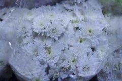Les bouquets blancs frais sont disponibles au marché photographie stock