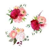 Les bouquets de cadeau de les feuilles se sont levés, de pivoines, de ranunculus, d'oeillet et d'eucalyptus illustration stock
