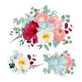 Les bouquets mélangés saisonniers de la pivoine, ranunculus, succulents, sauvages le vecteur se sont levés, d'oeillets, de brunia Photographie stock libre de droits