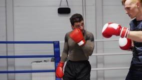 Les boxeurs discutent l'anneau de sport de conversation de plaisanterie de combat banque de vidéos