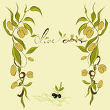 Les branchements d'olive illustration libre de droits