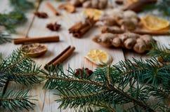 Les branches d'arbre de Noël se ferment sur le premier plan Épices traditionnelles pour le vin chaud, boulangerie de Noël : canne Photo libre de droits